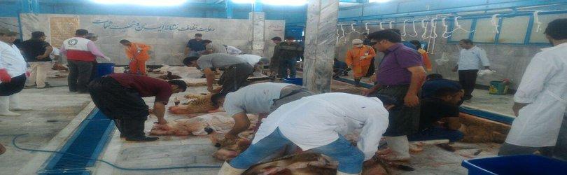 رشد پنج درصدی ذبح قربانی در کشتارگاه شهرداری تایباد