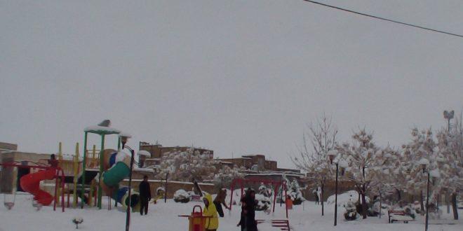 شهردار تایباد جهت جلوگیری از خسارت به فضای سبز از شهروندان فهیم تایبادی کمک طلبید.