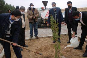 آئین گرامیداشت روز درختکاری با حضور مسئولین شهرستان تایباد برگزار شد.