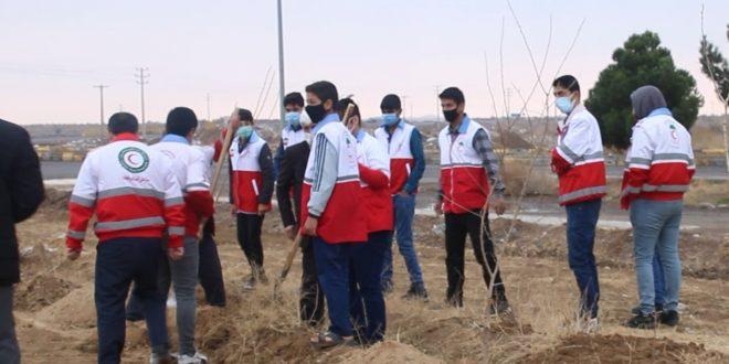 همزمان با ۱۵ اسفند،  روز درختکاری دومین توتستان شهر تایباد نهالکاری شد.